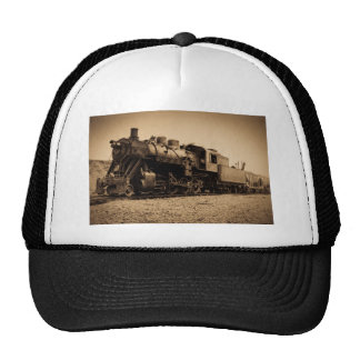 Lake Superior & Ishpeming Railroad #20 Sepia Trucker Hat