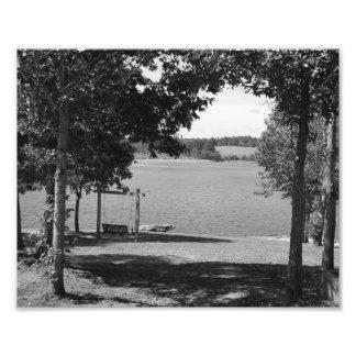 Lake Swing Photographic Print