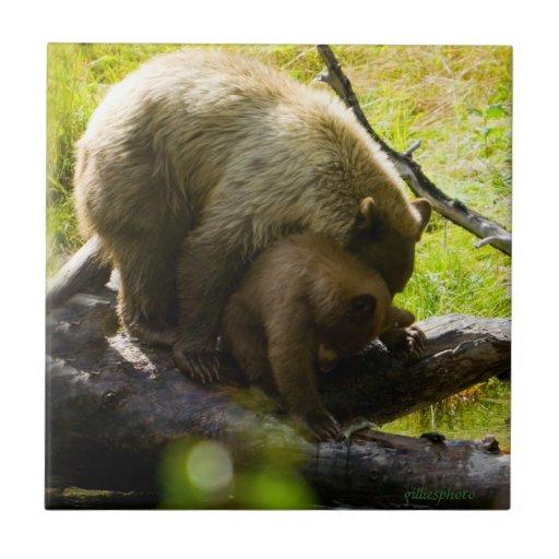 Lake Tahoe Bears cub & mom cute cuddling feeding Ceramic Tile