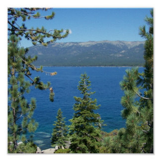 Lake Tahoe Blue Forest Green Rocky Shore Poster