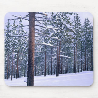 LAKE TAHOE STATE PARK, NEVADA. USA. Fresh snow Mouse Pad