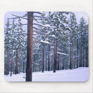 LAKE TAHOE STATE PARK, NEVADA. USA. Fresh snow Mouse Pad