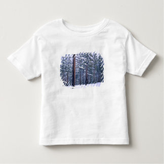LAKE TAHOE STATE PARK, NEVADA. USA. Fresh snow Toddler T-shirt