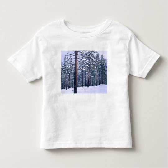 LAKE TAHOE STATE PARK, NEVADA. USA. Fresh snow Toddler T-shirt