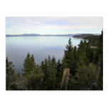 Lake Tahoe with pine trees Postcard