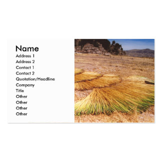 Lake Titicaca Uros Reed Island Business Card