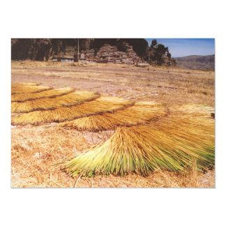 Lake Titicaca Uros Reed Island Personalized Invitations