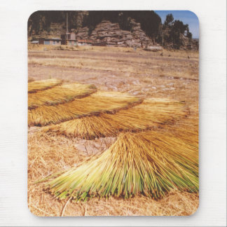 Lake Titicaca Uros Reed Island Mouse Pad