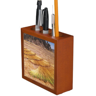 Lake Titicaca Uros Reed Island Pencil Holder