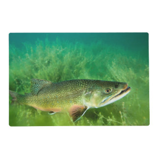 Lake Trout Portrait, Emerald Lake, Montana Placemat