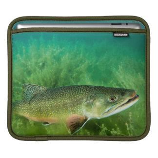 Lake Trout Portrait, Emerald Lake, Montana Sleeve For iPads