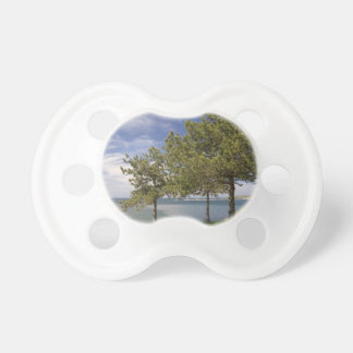 Lake View Baby Pacifier