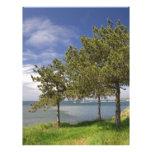 Lake View Letterhead Template