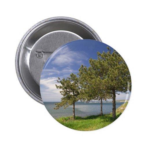 Lake View Pins