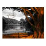 Lake View Post Card