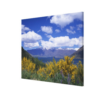Lake Wakatipu and the Remarkables, Queenstown, Canvas Print