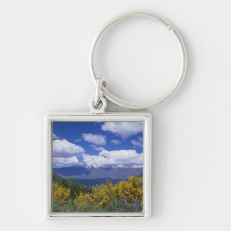 Lake Wakatipu and the Remarkables, Queenstown, Silver-Colored Square Keychain