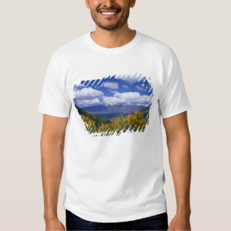 Lake Wakatipu and the Remarkables, Queenstown, T Shirt