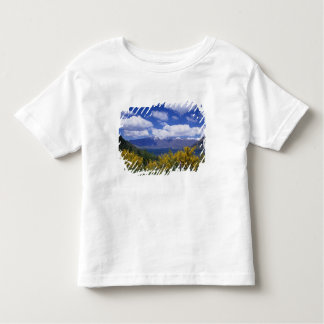 Lake Wakatipu and the Remarkables, Queenstown, Toddler T-shirt