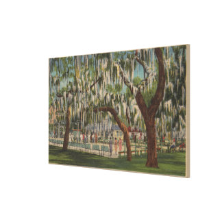 Lake Wales, FL - Outdoor View of Shuffleboard Canvas Print