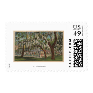 Lake Wales, FL - Outdoor View of Shuffleboard Stamps