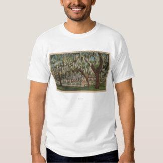Lake Wales, FL - Outdoor View of Shuffleboard T-shirt