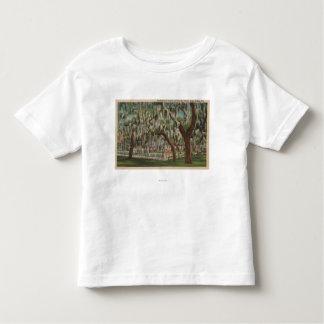 Lake Wales, FL - Outdoor View of Shuffleboard T-shirts