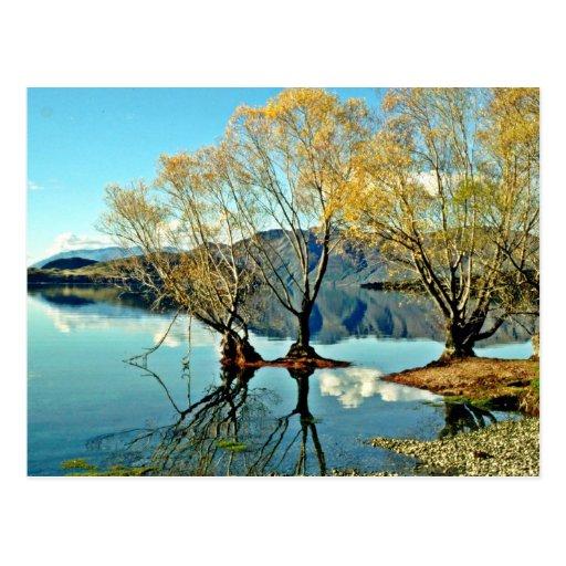 Lake Wanaka Post Card
