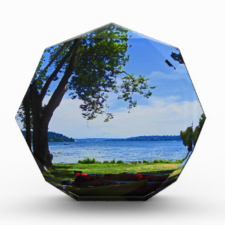 Lake Washington Award