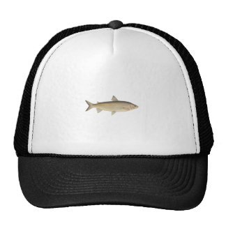 Lake Whitefish Trucker Hat