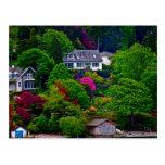 Lake Windermere England Postcard
