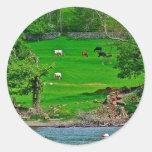 Lake Windermere Stationary Stickers