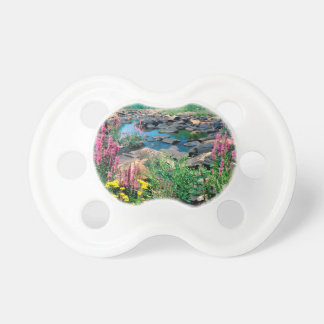 Lake Wisconsin River Ice Age Reserve Wisconsin Baby Pacifier