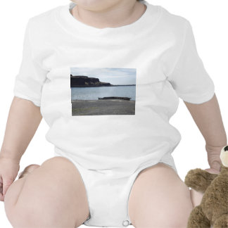 Lake with Cliffs and Dock T Shirts