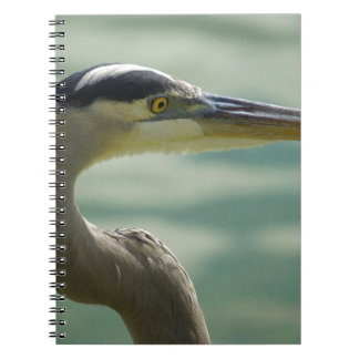 Lakeland Egret Notebook