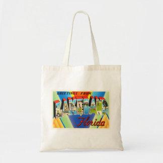 Lakeland Florida FL Old Vintage Travel Souvenir Tote Bag