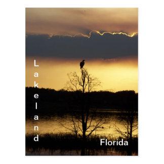 Lakeland Florida Sunset 139 Postcard