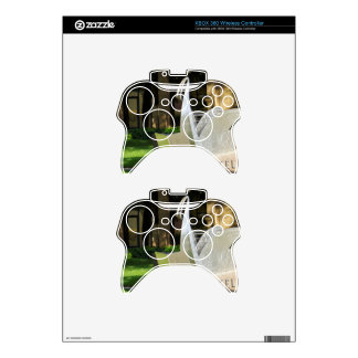 Lakeland Library Xbox 360 Controller Skins