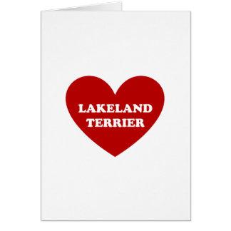 Lakeland Terrier Tarjeta De Felicitación