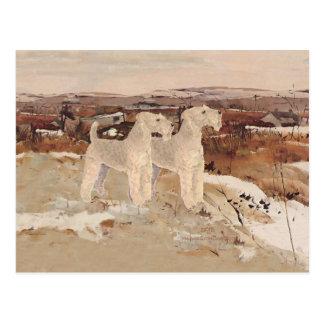 Lakeland Terriers November Days Postcard