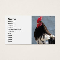 Lakenvelder Rooster Business Card