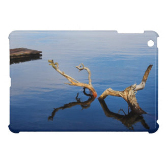 Lake's Edge Abstract Tranquility iPad Mini Cover