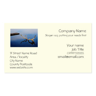 Lake's Edge generic business card template