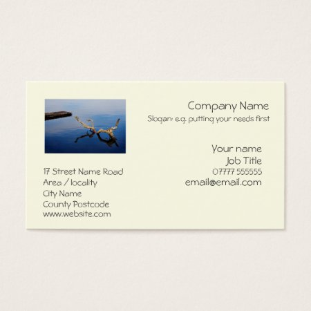 Lake's Edge generic business card template