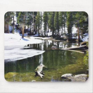 Lakes Snow Trees Forrests Mousepad