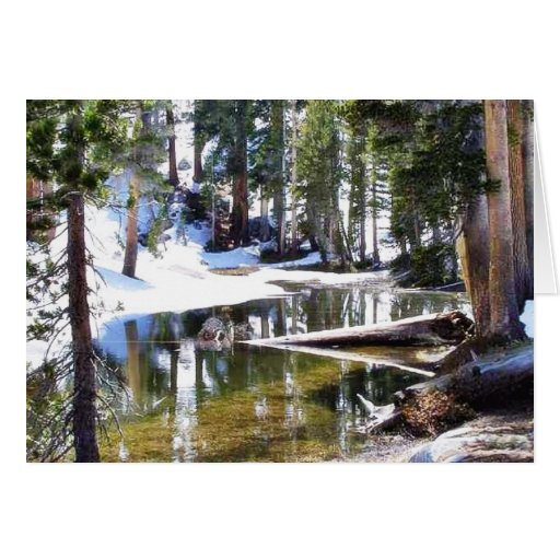 Lakes Trees Forrests Greeting Card