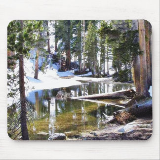 Lakes Trees Forrests Mouse Pad