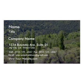 Lakes With Green Trees Marshes Business Card