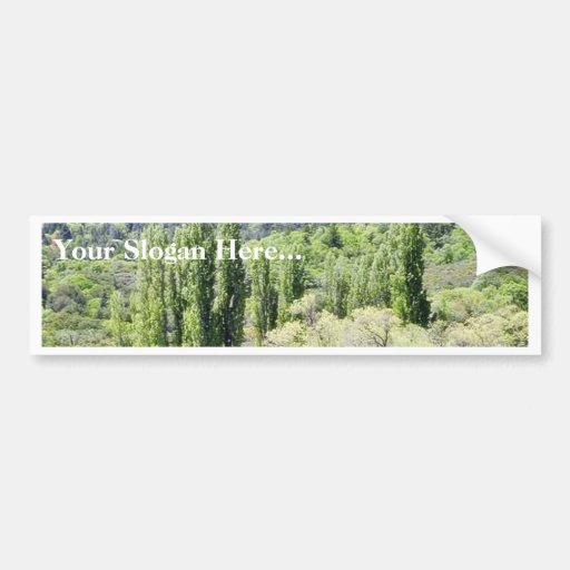 Lakes With Green Trees Marshes Car Bumper Sticker