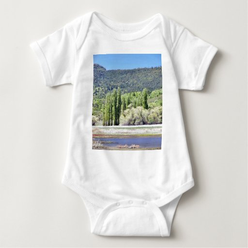 Lakes With Green Trees Marshes Infant Creeper